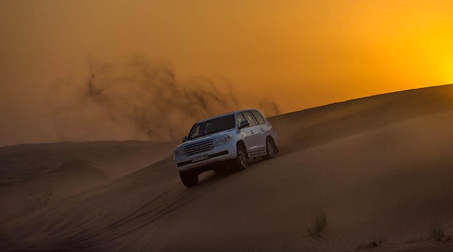 red dune safari tour