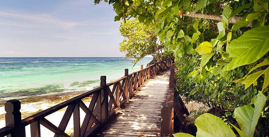 tropical beach walkway