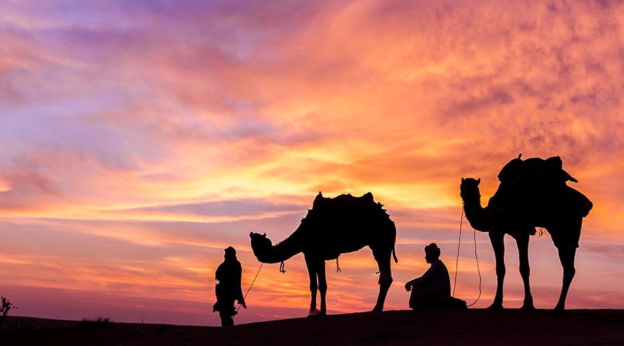 overnight camel riding