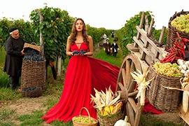 wine tour tblisi