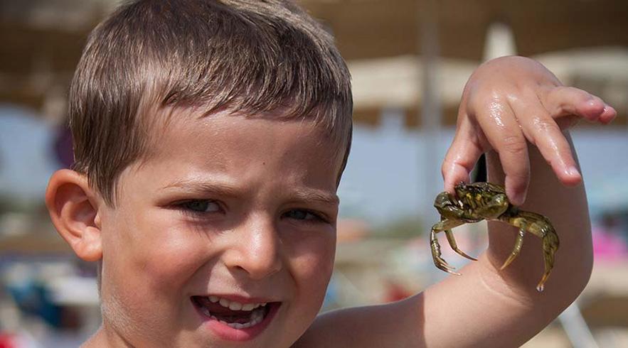 dubai crab hunting