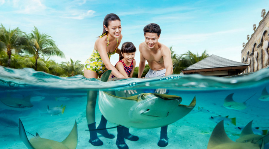 Singapore Adventure Cove Waterpark Tours And Tickets