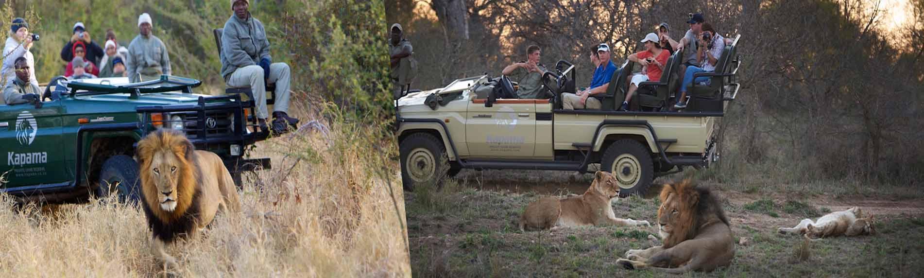 aquila wildlife safari