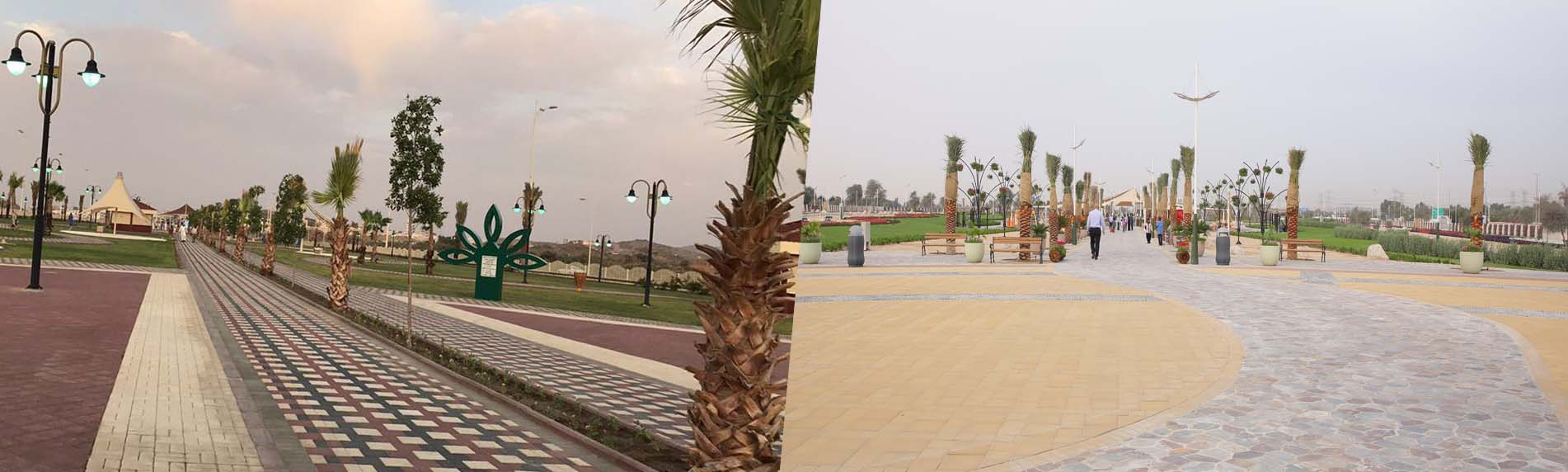 palm-oasis-park-frontimg.jpg