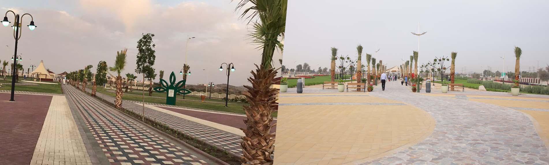 palm-oasis-park-frontimg.jpg