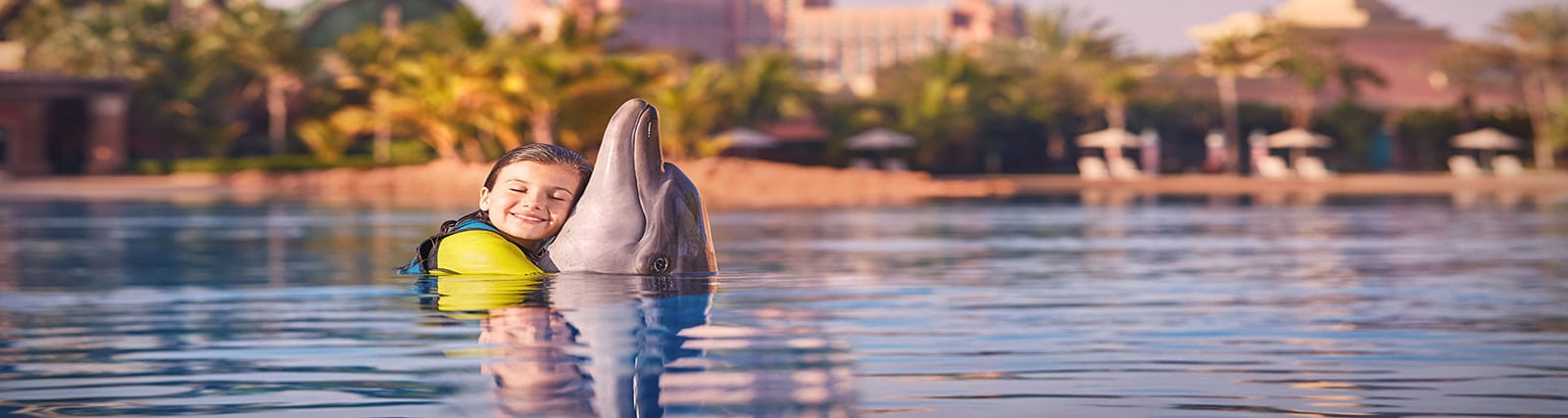 dolphin photo fun