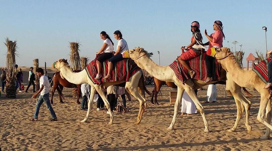 camel riding in dubai